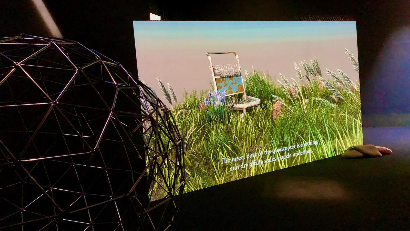 Tulevaisuudet taiteessa: Taitelijakaksikko nabbteerin teoksessa ihmisen ja muiden lajien yhteinen tulevaisuus vaatii muutoksia – ihmiseltä